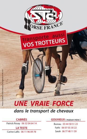 STC/HORSE FRANCE